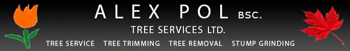 Alex Pol Landscaping